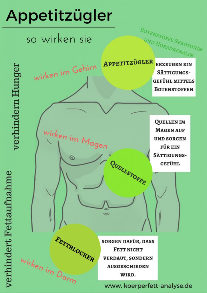 Infografik Appetitzügler auf koerperfett-analyse.de
