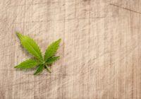 Abnehmen durch Stressreduktion und Cannabis auf koerperfett-analyse.de